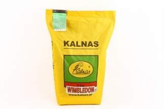 Trawa Wimbledon 5 kg firmy Kalnas – odporna na intensywne użytkowanie, na tereny sportowe