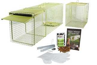 Jednostronna zielona żywołapka KM3 z komorą na kuny, koty i lisy