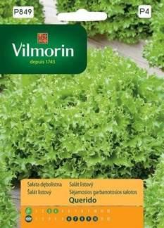 SAŁATA DĘBOLISTNA QUERIDO 0,5g GCP4 Vilmorin