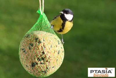 Kula tłuszczowa zimowa dla ptaków 90g Natural-Vit 10szt folia