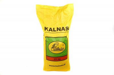 Trawa Dark 25kg firmy Kalnas – parkowa, na tereny zacienione